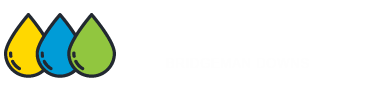 Carpet Cleaning Bridgemandowns